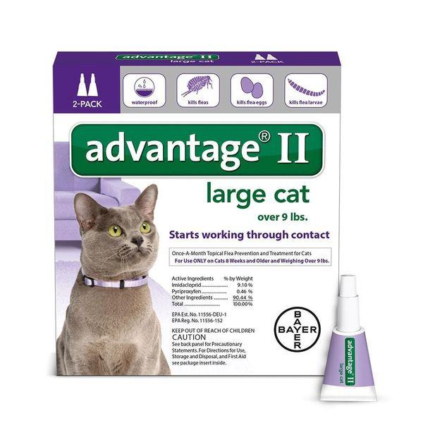advantage 2 Large Cat