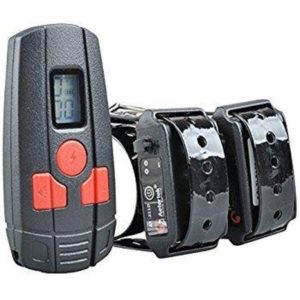 Aetertek AT-211 Rechargeable Small Dog Cat Training Collar
