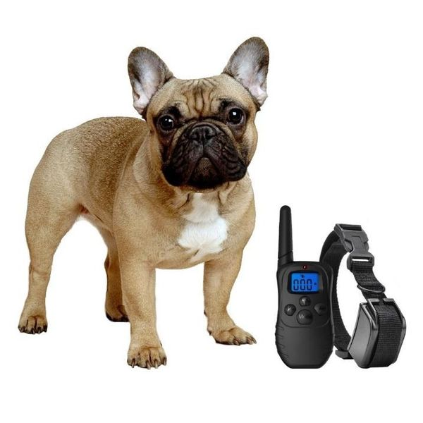 eXuby Dog Shock Collar with Remote