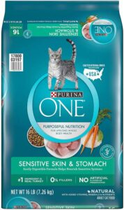 Purina ONE Sensitive Skin & Stomach Dry Cat Food
