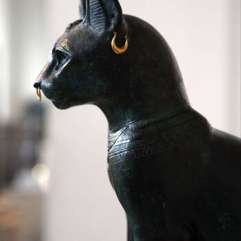 Egyptian Cat Names Inspired by Ancient Times